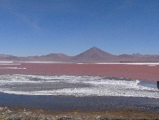 laguna colorada bolivie