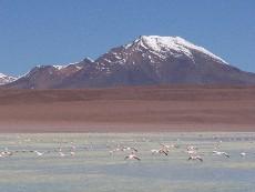 laguna khara bolivie